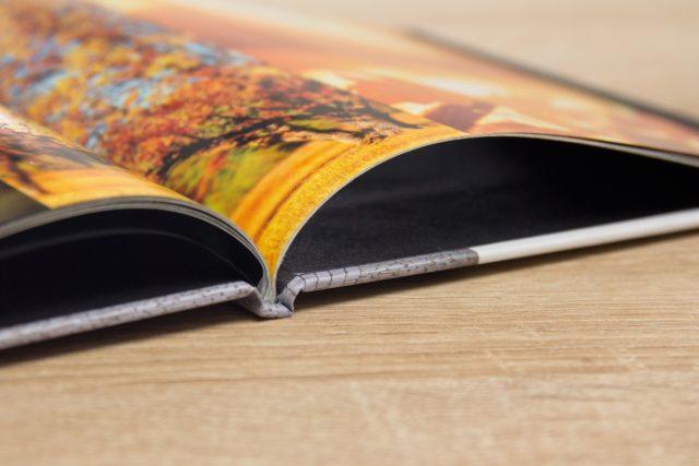 Consejo: puedes colocar varias fotos con colores parecidos o con un mismo tema en una página doble.