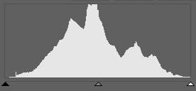 Este histograma se parece a una hermosa cordillera, que se extiende uniformemente desde el punto 0 al punto 255.