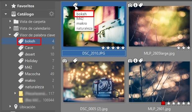 Como novedad, el catálogo de ZPS permite visualizar las fotos utilizando palabras clave.