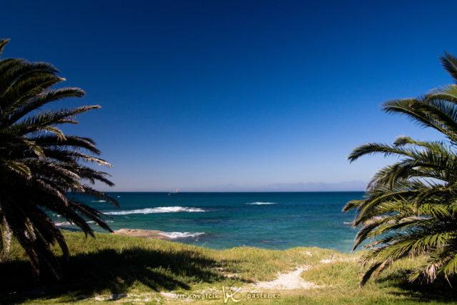 Encuadre del mar con las palmeras cercanas.