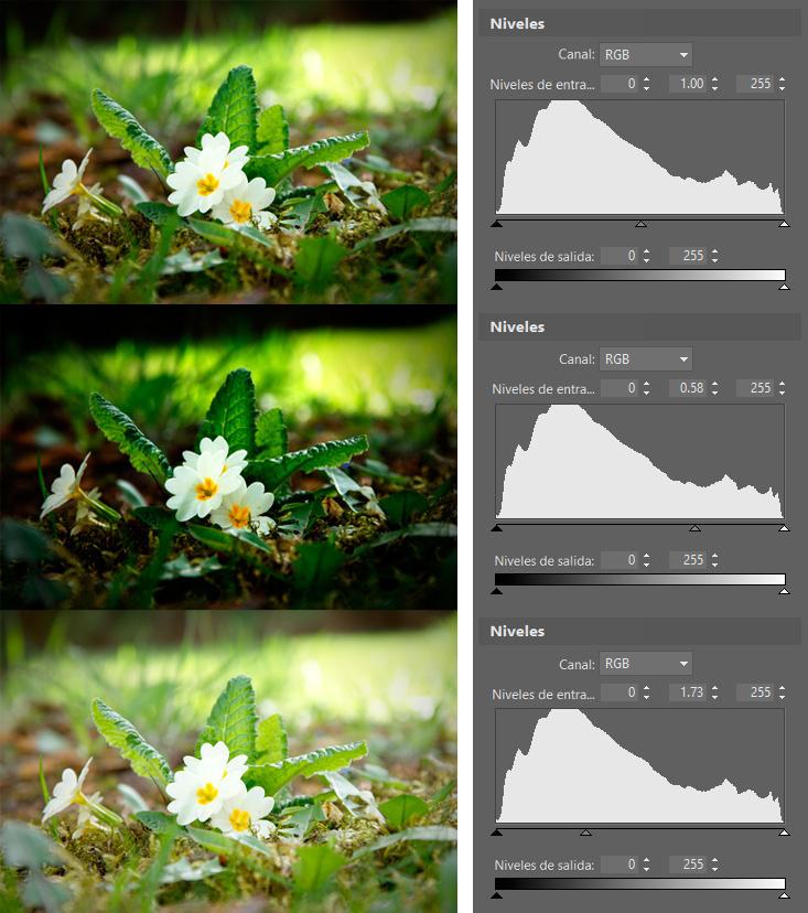 Controla el espectro de color de las fotos con ayuda de los niveles: Los tonos medios ayudan a afinar el brillo general de imagen.
