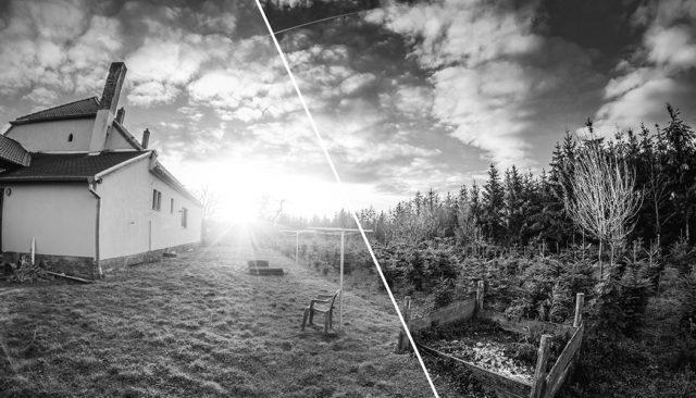 Crea tus propias fotos en blanco y negro