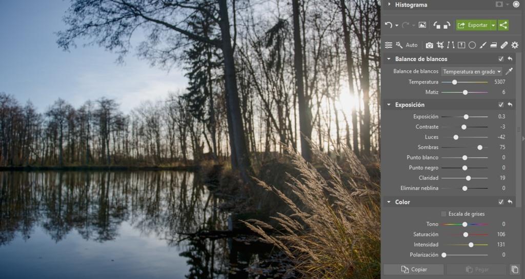 Cómo editar archivos RAW: automática.