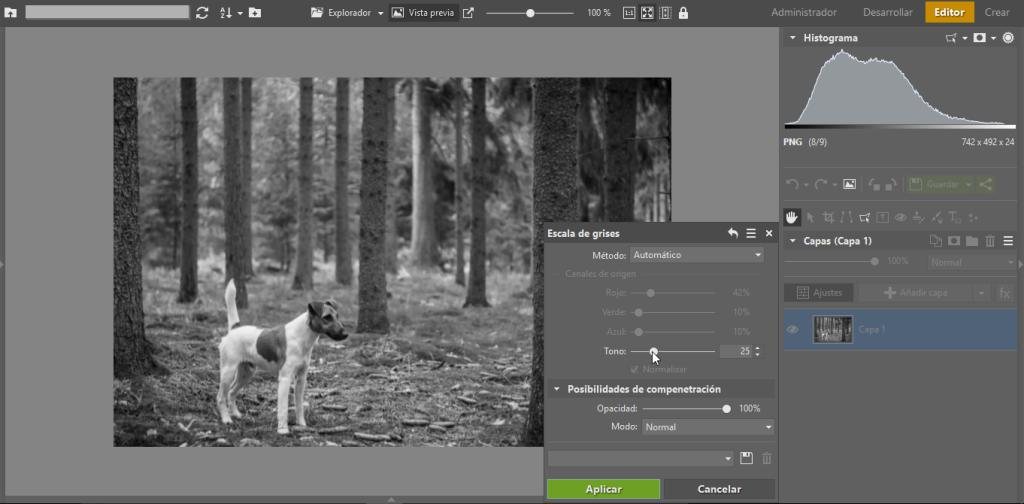 Crea tus propias fotos en blanco y negro, rapido opcion