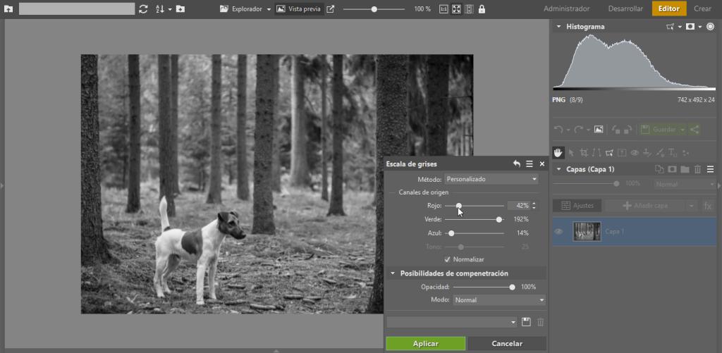 Crea tus propias fotos en blanco y negro, usuario